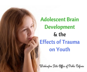 'Adolescent Brain Development and the Effects of Trauma on Youth' Sponsored by the Washington State Office of Public Defense | Pasco