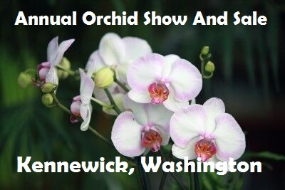 Annual Orchid Show And Sale In Kennewick, Washington