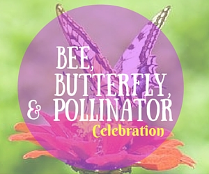 Bee, Butterfly and Pollinator Celebration - Explore the Garden and Learn About Plants, Landscape, Bees and Butterflies | Richland, WA