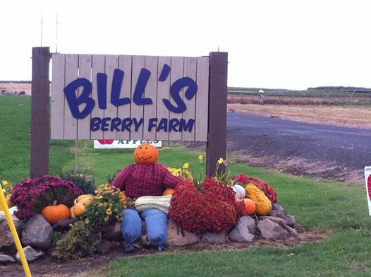 Compassion Day At Bill's Berry Farm Grandview, Washington