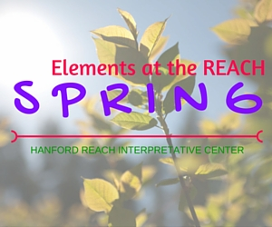 Elements at the REACH -Learn More and Love More the Season of Spring! | Hanford Reach Interpretative Center in Richland, WA