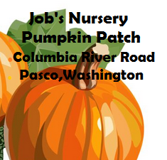 Job's Nursery Pumpkin Patch Columbia River Road In Pasco,Washington