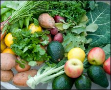 Kennewick Avenue Farmers Market | Kennewick Washington 99336