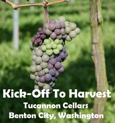 Kick-Off To Harvest Tucannon Cellars Benton City, Washington