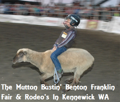 The Mutton Bustin' Benton Franklin Fair & Rodeo's In Kennewick Washington