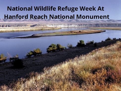 National Wildlife Refuge Week At Hanford Reach National Monument
