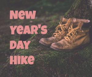 New Year's Day Hike | I-MAC's Annual Trek Up at Badger Mountain in Richland, WA