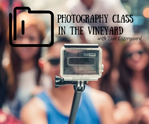 Photography Class in the Vineyard with Dan Ostergaard: A Worthwhile Summer Workshop | Richland, WA