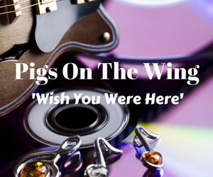 Pigs On The Wing Performs Songs From the Album