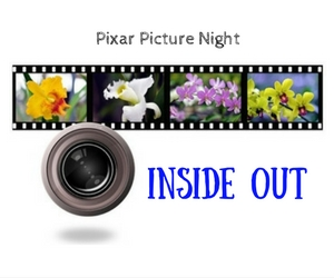 Pixar Picture Night Featuring 'Inside Out' - A Presentation of Confluent Space Tri-Cities | Richland, WA