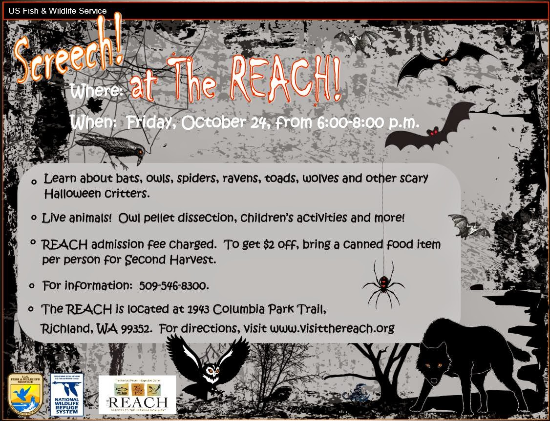 Screech! At The REACH: Halloween Animals In Richland, Washington