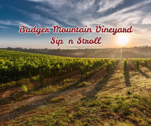 Badger Mountain Vineyard Sip 'n Stroll
