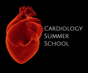 2017 cardiology summer school image