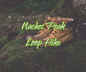 Naches Peak Loop Hike image