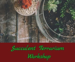 Succulent Terrarium Workshop