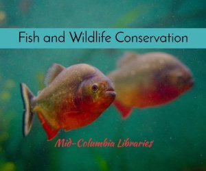 fish and wildlife conservation image