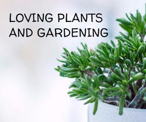 loving plants and gardening