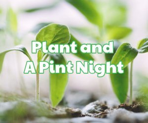 Plant and a Pint