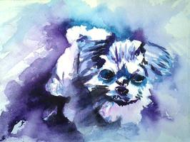 Painting From A Photo - Animals (A Chris/Suzi Watercolor Workshop) Richland, Washington